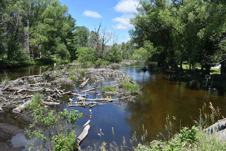 North Branch of Au Sable River at Lovells